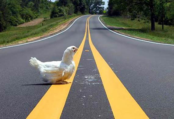 Loading Road Chicken