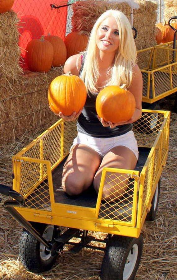 Loading Karissa Pumpkins