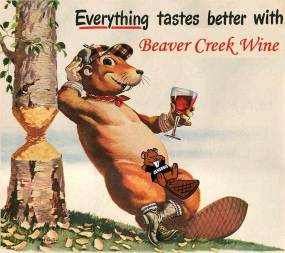 Loading Bald Beaver