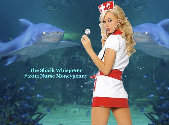 Loading The Shark Whisperer