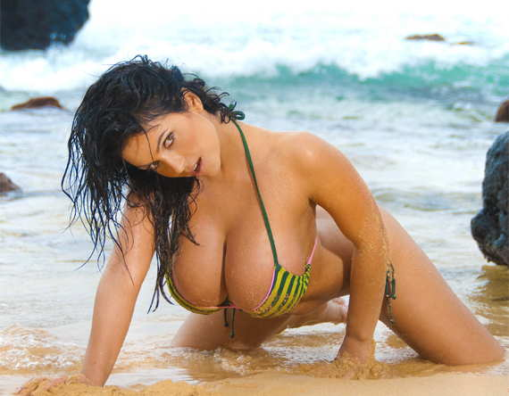 Loading The iRack of Denise Milani