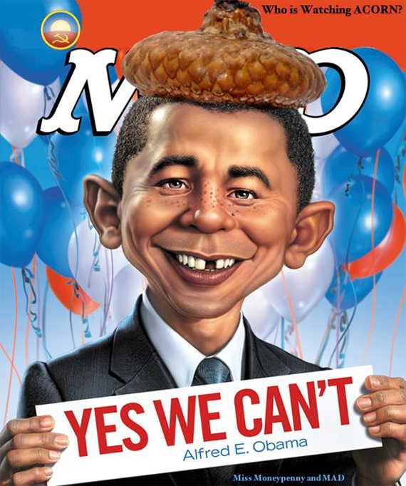 Loading Barack Nuts